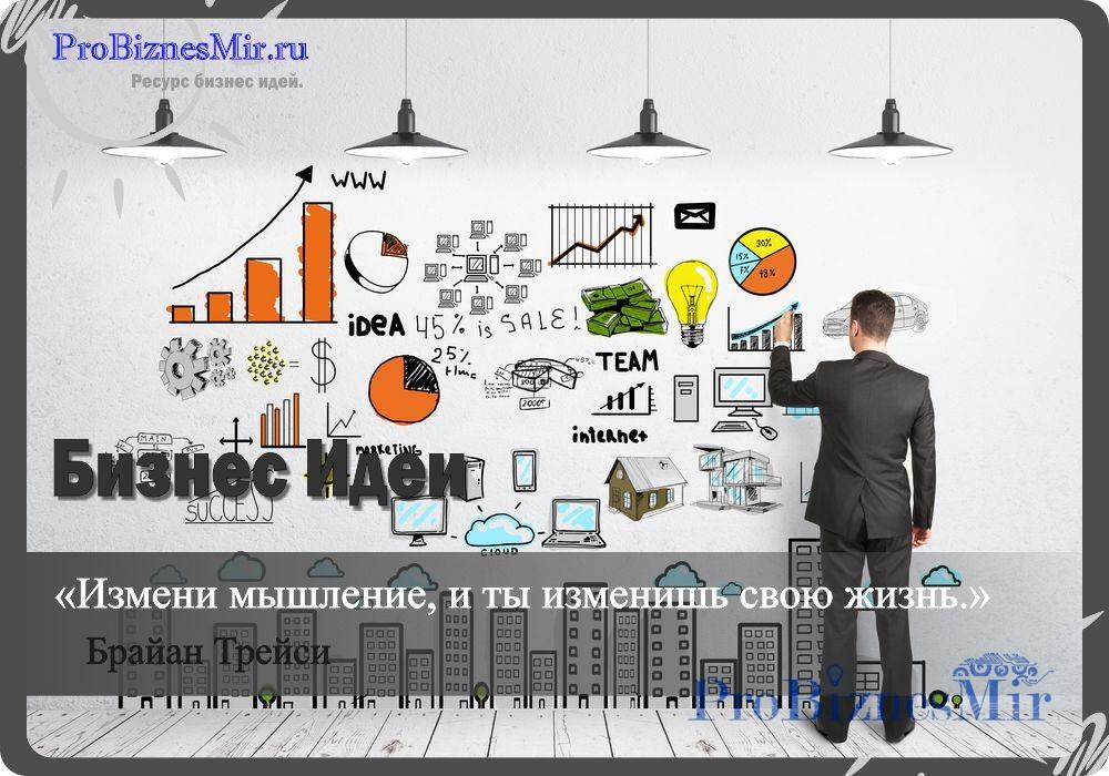 содержание бизнес идеи